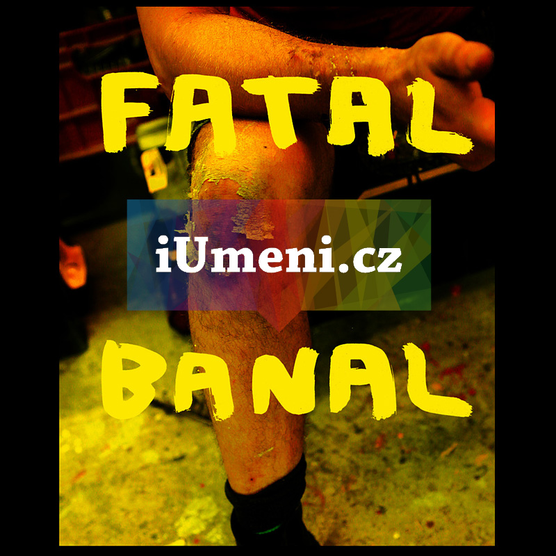 Krištof Kintera : Fatal Banal - Krištof Kintera, text
