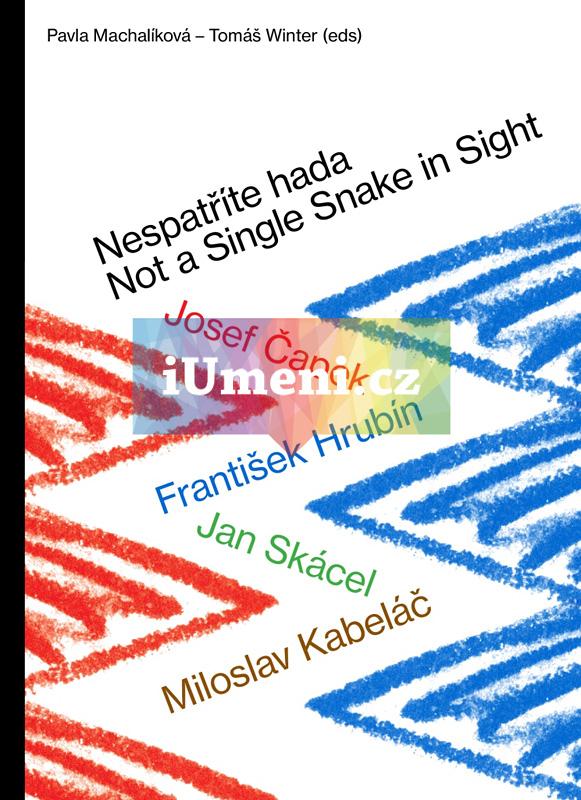 Nespatříte hada / Not a Single Snake in Sight - Pavla Machalíková – Tomáš Winter (edd.)