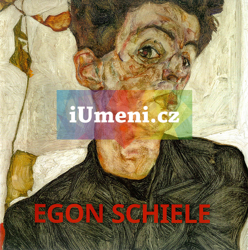 Egon Schiele - Hajo Düchting